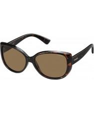 Polaroid Damen pld4031-s q3v ig havanna dunkel polarisierte Sonnenbrille