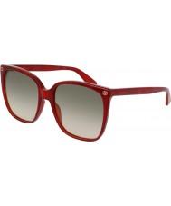 Gucci Damen gg0022s 006 Sonnenbrillen