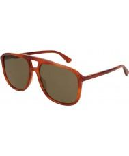 Gucci Herrenbrille gg0262s 002 58
